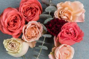 roses_eucalyptus_carnation